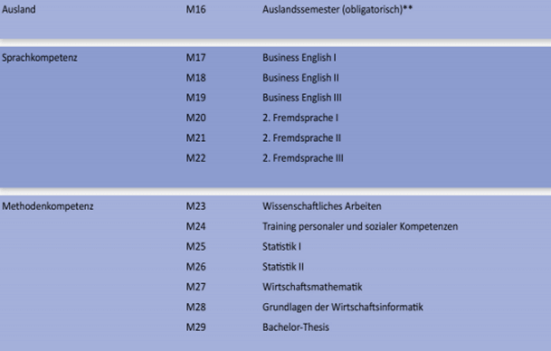Screenshot BSP International Business Studienverlaufsplan