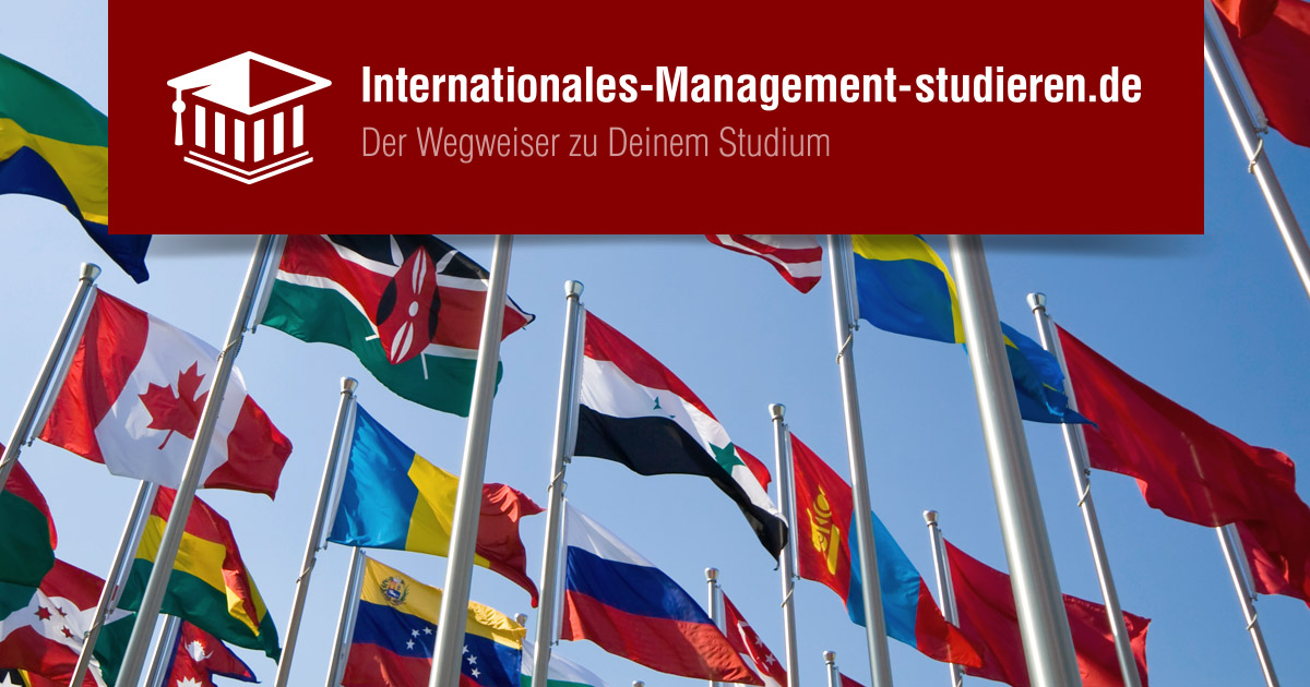 internationales management erfahrungen und ForManagement Studium Nc